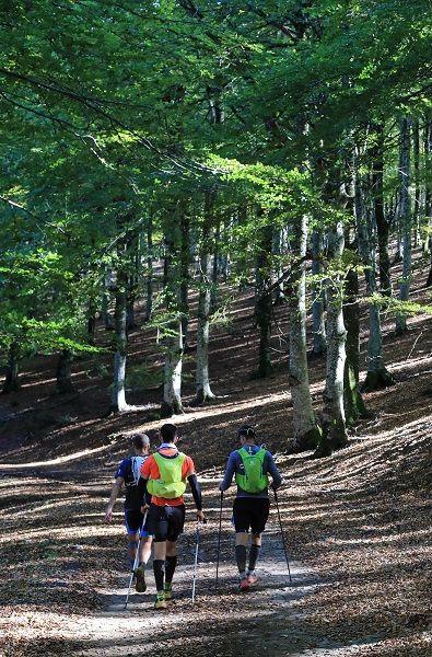 Trail ultra : 100 Miles